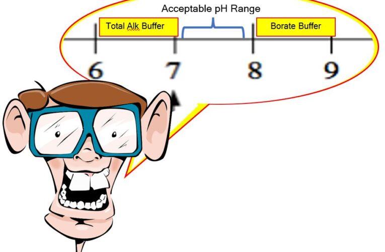 How Borates in Swimming Pools  Buffer pH